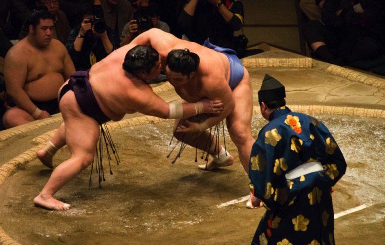 Voir sumo au Japon