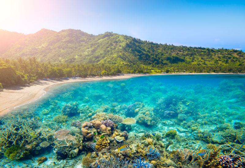 Séjour en famille Bali