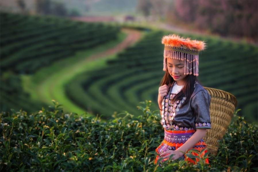 vacance thailande circuit