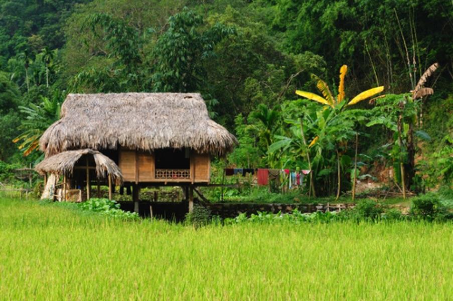 Vietnam vacances