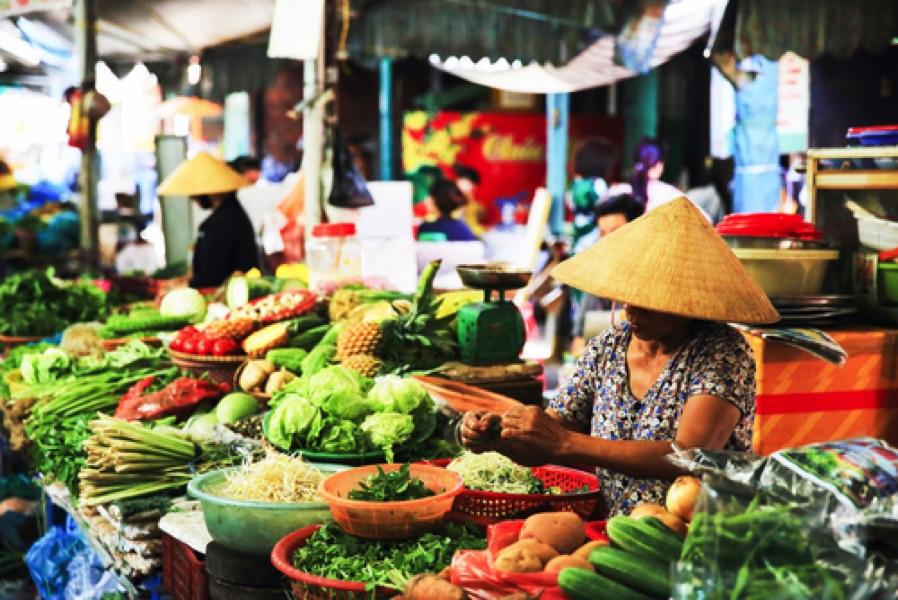 Vietnam avec guide